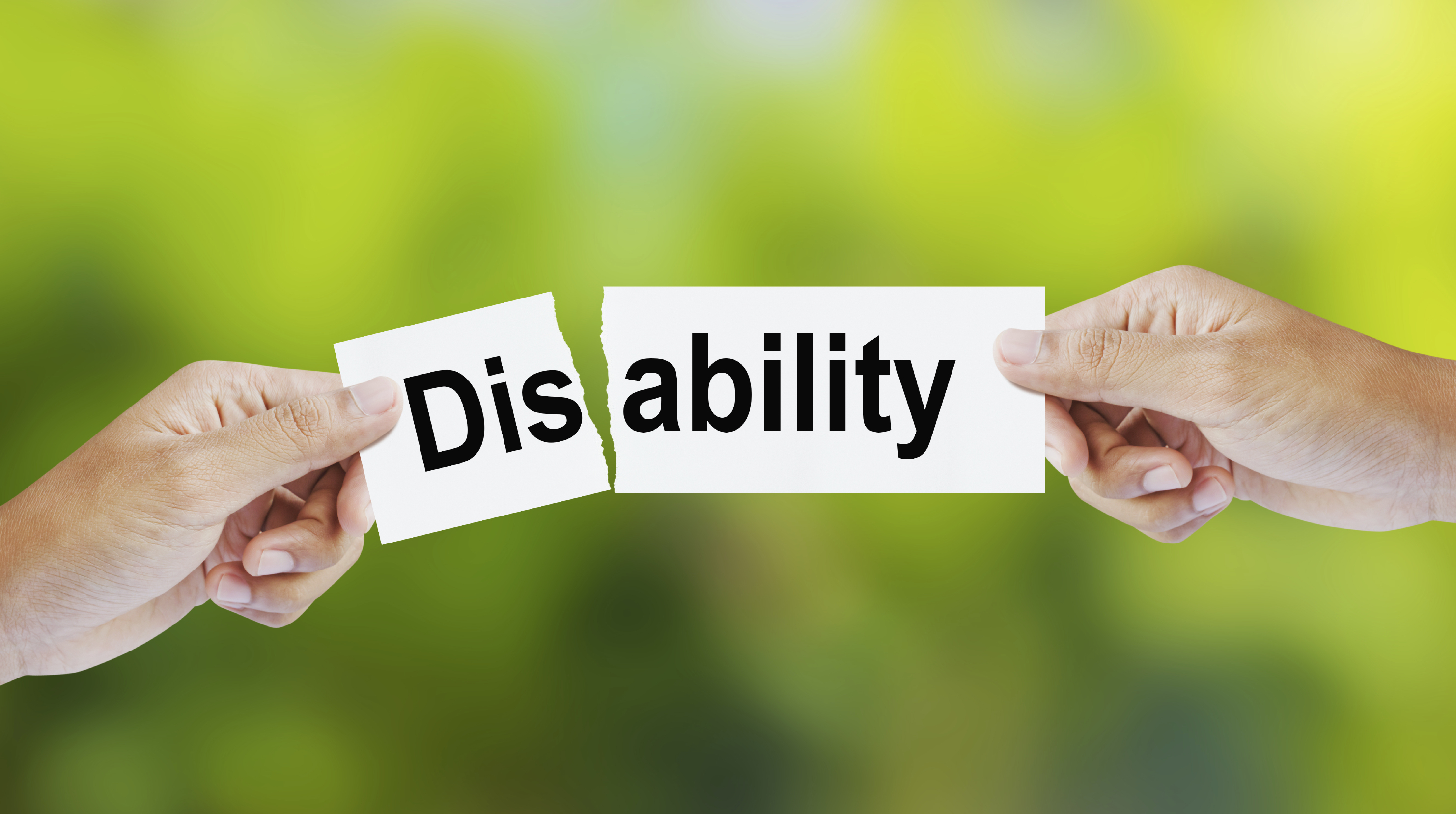 Feasibility Study – Foundation For Artists With Disability